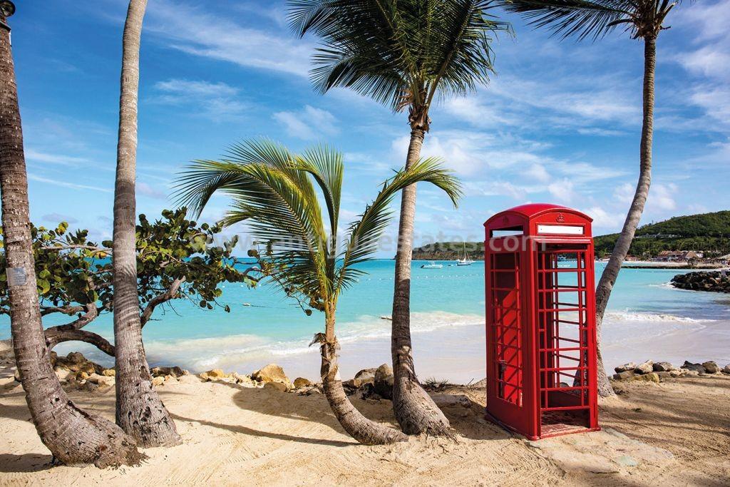 Coconut grove Antigua-1011503905-HR-1024x683